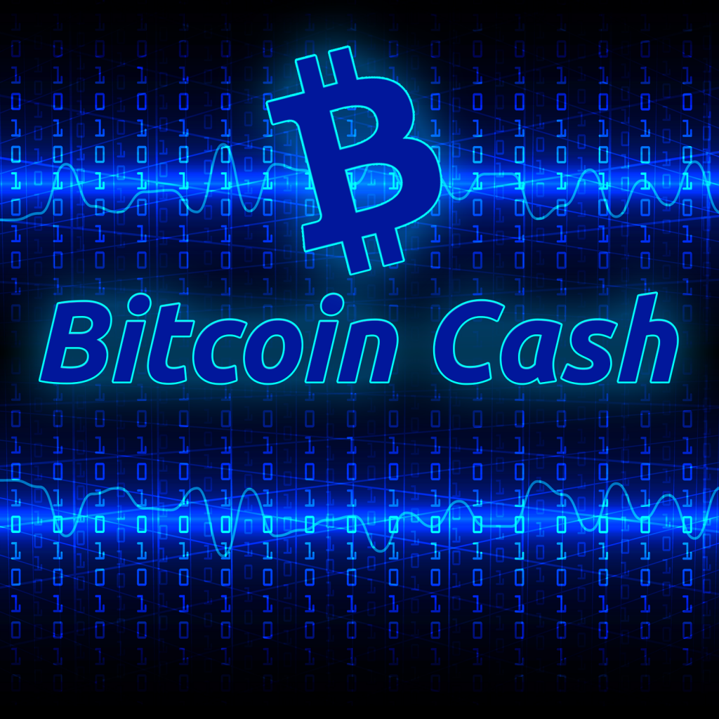 Lead Developer Amaury Séchet Discusses the Future of Bitcoin Cash